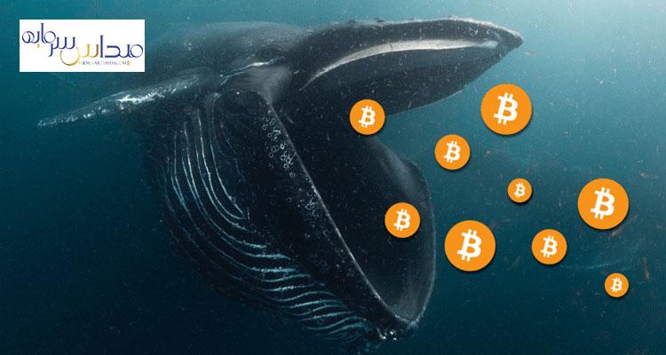 فروش 140000 بیت کوین توسط نهنگ ها در یک ماه گذشته