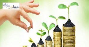 نهاد های مالی بورس چیست و به چند دسته تقسیم می شوند